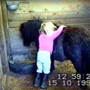 sarah hugging her Midget