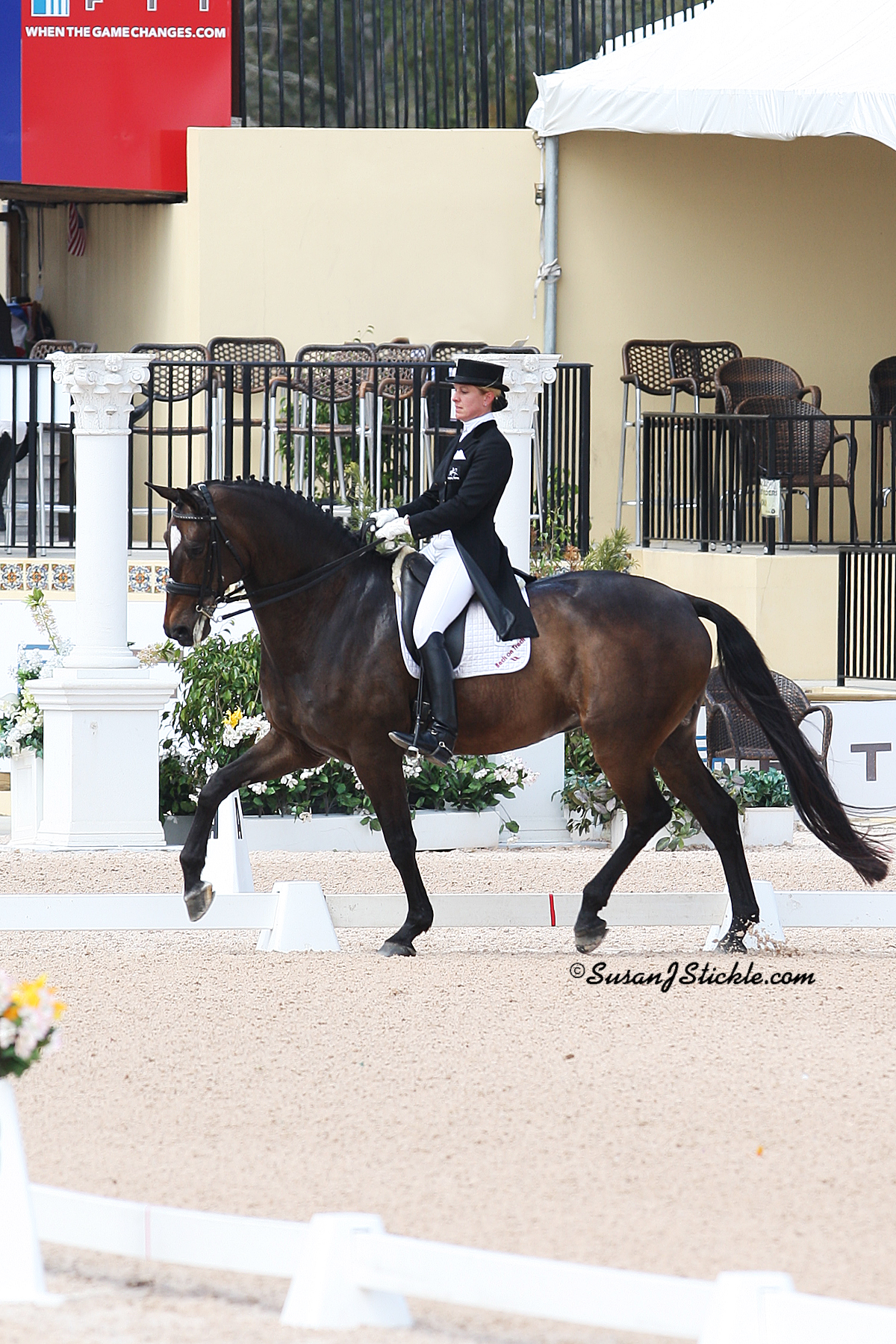 Arenus Ambassadors Lars Petersen and Melissa Taylor on Chicco performed a Pas de Deux at the HITS-on-the-Hudson $1 Million Grand Prix in Saugerties, New York. Arenus, a premier provider of innovative health and nutritional products for pets and horses, sponsored the dressage demonstration. (Photo courtesy of Susan Stickle)