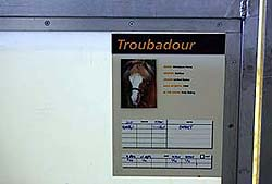 TroubadorSport1