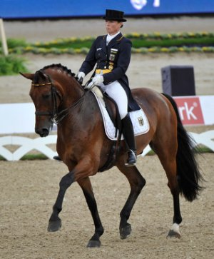 Isabell Werth and Don Johnson produced the best  individual score on the opening day of the Blue Hors FEI European  Dressage Championship at Herning, Denmark today to help put Germany in  the lead at the halfway stage of the Team competition