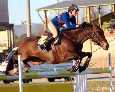 Emma Botfield - Warialda PC - 17 & under 25 age group on horse Everything Equine Bella