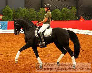 Steffen Peters rides Shiraz Black