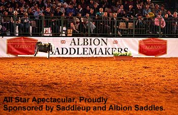 Saddle Up and Albion Saddlemakers - the Sponsors